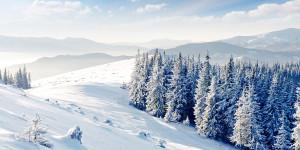 Winter-snow-l